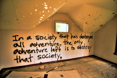 المجتمع