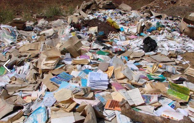 الرواية الجزائرية